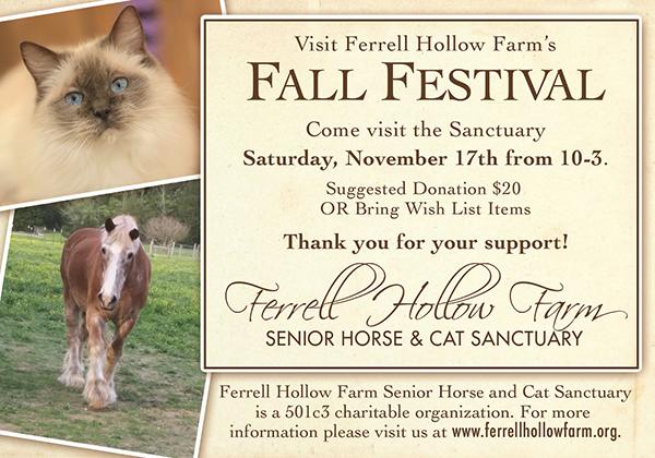 SENIOR HORSE & CAT SANCTUARY FALL FESTIVAL